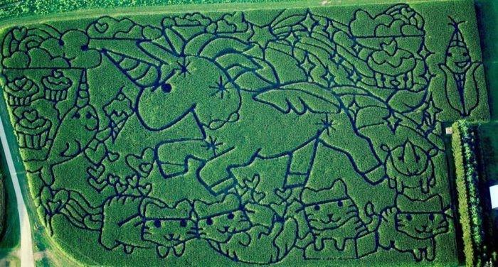 Unicorn corn maze